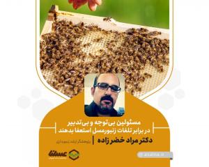 مراد خضر زاده: مسئولین بیتوجه و بیتدبیر در برابر تلفات زنبورعسل استعفا بدهند
