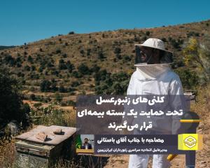 تحقق بیمه کلنیهای زنبورعسل | تلاش میکنیم خسارات زنبورداران مشمول بیمه شود