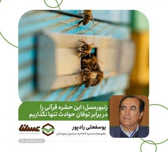 زنبورعسل؛ این حشره قرآنی را در برابر توفان حوادث تنها نگذاریم
