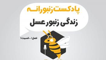 پادکست زنبورانه - فصل 1 قسمت 1 - زندگی زنبور عسل