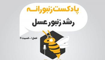 پادکست زنبورانه - فصل 1 قسمت 2 - رشد زنبور عسل