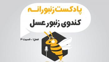 پادکست زنبورانه - فصل 1 قسمت 3 - کندوی زنبورعسل