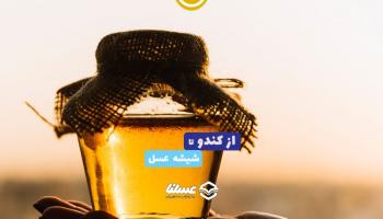 ویدئو: از کندو تا شیشه عسل