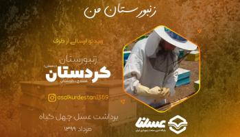ویدئو: برداشت عسل طبیعی از زنبورستان کردستان (دهقان) در مرداد 99