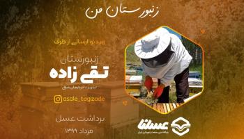 ویدئو: برداشت عسل از زنبورستان تقی زاده در شهرستان تبریز