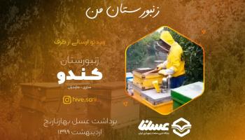 ویدئو: برداشت عسل بهارنارنج از زنبورستان کندو مازندران